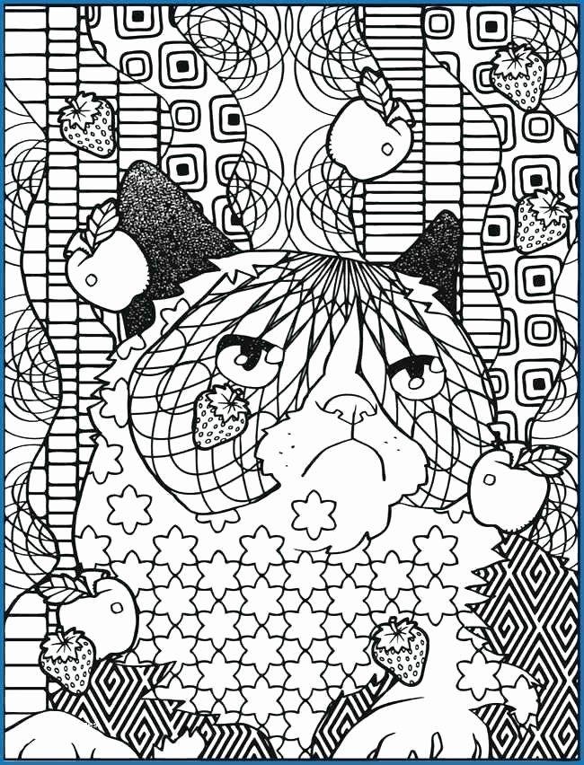 Grumpy Cat Coloring Book New Grumpy Cat Coloring Sheet Grumpy Cat Cat Coloring Page Cat Coloring Book Coloring Books