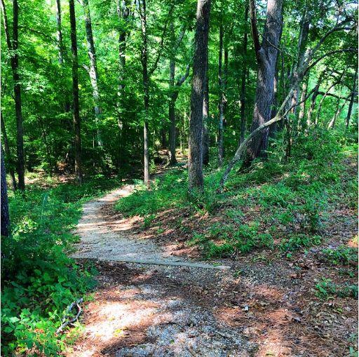 Natchez Trace Trail: