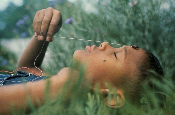 "Gordon Parks, ""Boy with June Bug, Kansas, 1963"". I like the simplicity of this photo and how the rich colors compliment the boy's rich chocolate skin."