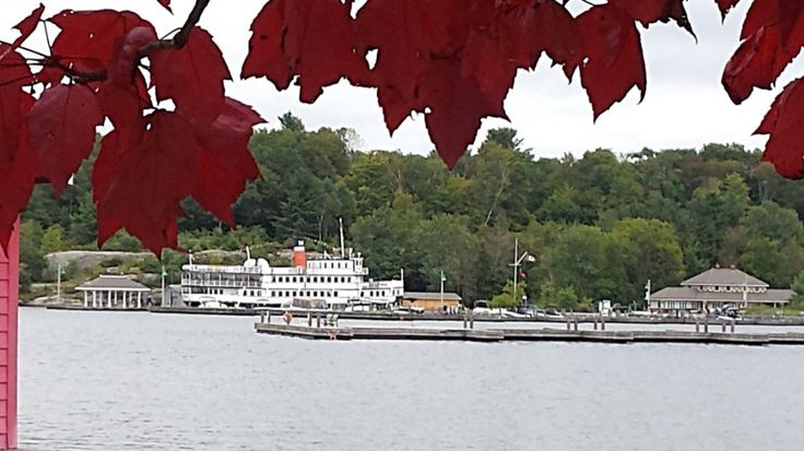 Fall isa special season at Muskoka Steamships & Discovery Centre. Our steamships provide excellent viewing opportunities for Fall colours. So we keep our fingers crossed every year. The best weather You decide, but we think this may be an excellent year. The best weather conditions for great Fall colours are a growing season with plentiful …