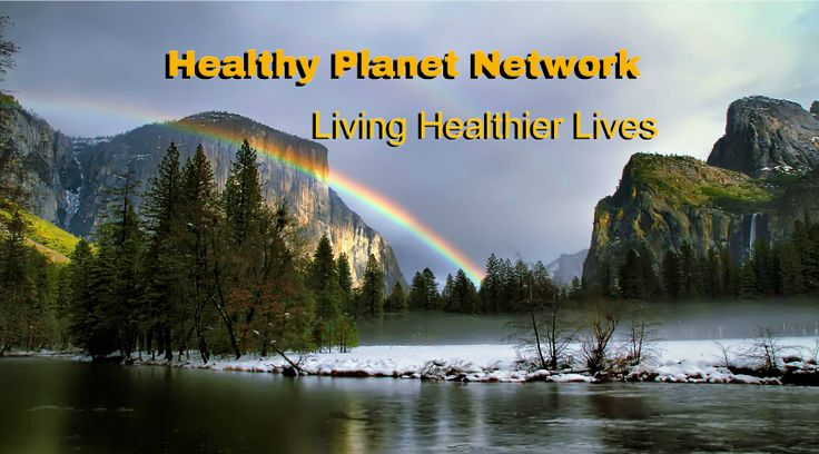 This is the header for my health, environment, and eco-conscious website