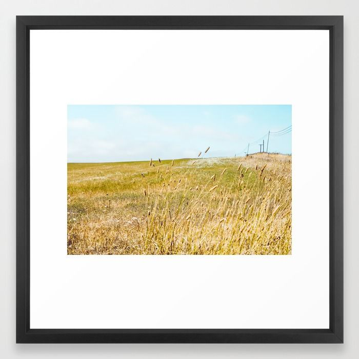 https://society6.com/product/the-sound-of-crickets-in-tall-grass_framed-print - #california landscape photography; #california landscape art prints for sale; #california landscape art for sale; #california landscape fine art prints; #california landscape art prints; #california landscape wall art; #california landscape prints corporate art; #california landscape prints home decor; #california