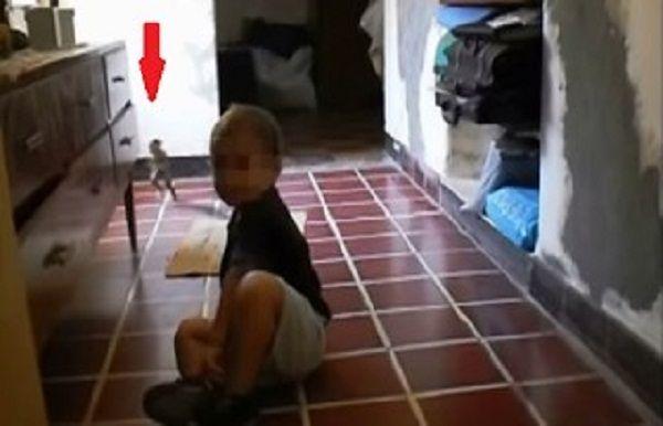 Μητέρα βιντεοσκοπούσε τον γιο της και δεν φαντάζεστε τι εμφανίστηκε…ένα μικρό πλάσμα[video] . Please read article about Μητέρα βιντεοσκοπούσε τον γιο της και δεν φαντάζεστε τι εμφανίστηκε…ένα μικρό πλάσμα[video]  at ΕΛΕΥΘΕΡΟΣ ΑΕΤΟΣ