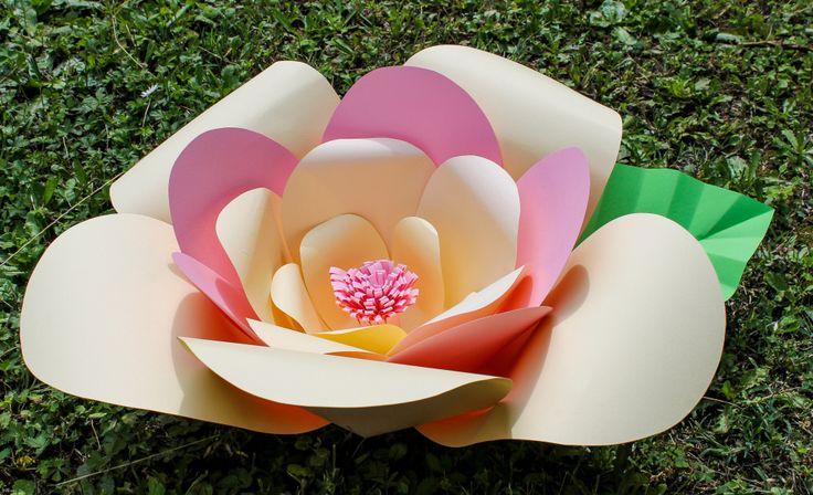 Giant Paper Flowers - Mirabile Carta