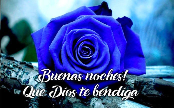 imágenes de rosas azules con mensajes de buenas noches