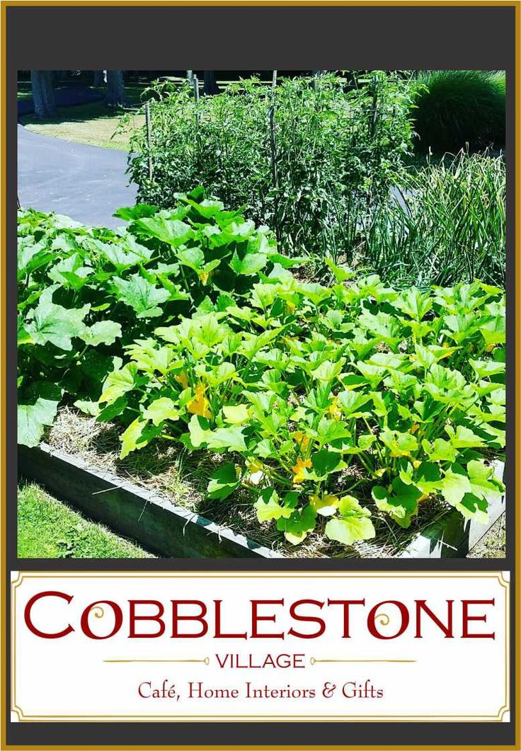 79 best Cobblestone Cafe Favorite Recipes images on Pinterest ...