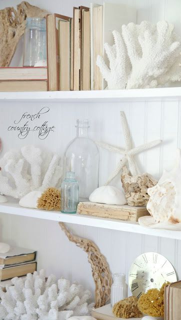 Bookshelf decorated with shells and books