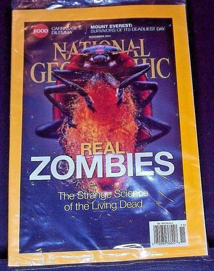 National Geographic Magazine Real ZOMBIES Science of Living Dead - Nov 2014 New