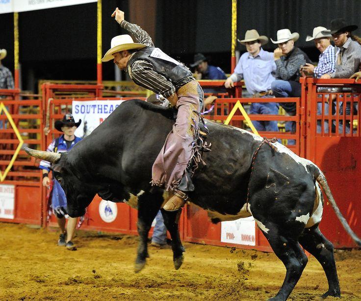 15 Best Pro Rodeo Ocala Florida Usa Images On Pinterest