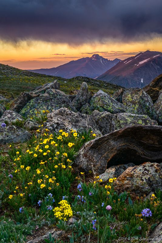 Trail Ridge Road, Rocky Mountain National Park ...Photo by Erik Stensland | Mountain life | rocky mountains | national park | colorado | places to visit | travel | bucket list | landscape photography | colorado photography | nature | hike | colorado hike | Schomp MINI