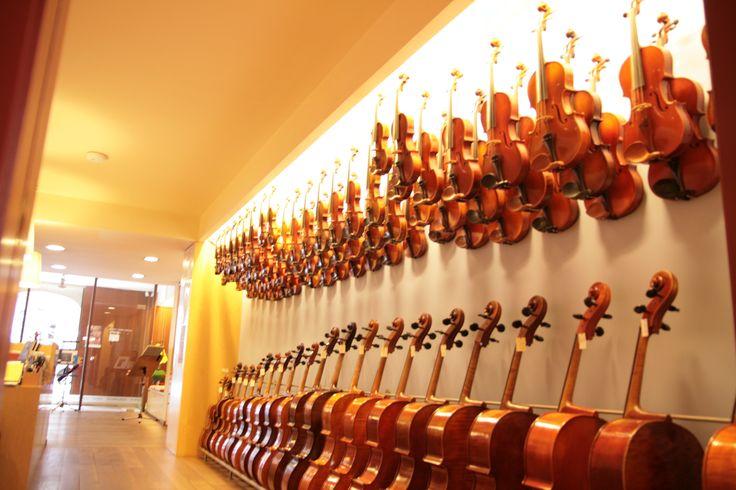 Gran disponibilidad de violines, violas y cellos