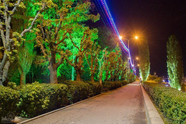 Подсветка деревьев на набережной Космонавтов в Саратове ...