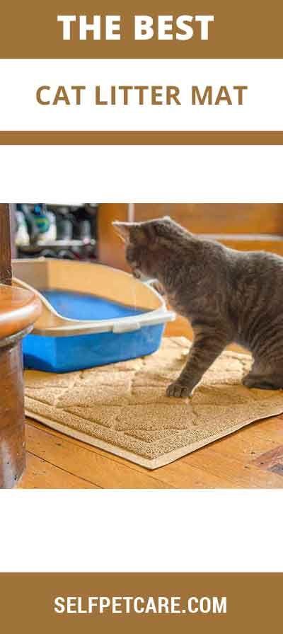 Best 25 Cat Litter Mat Ideas On Pinterest Best Cat