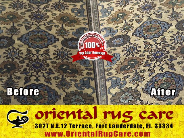 Professional Area Rug Cleaners
