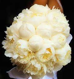 Bouquet - light yellow peonies