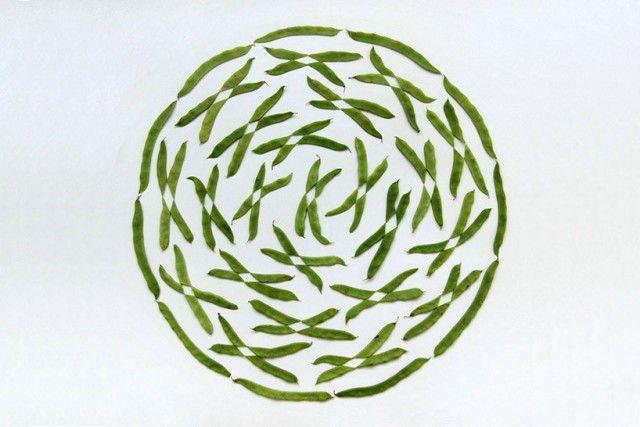 Food Art5