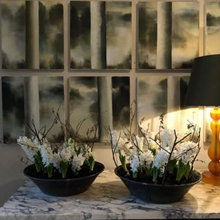 Several dozen hyacinths all flowering together smell utterly sublime