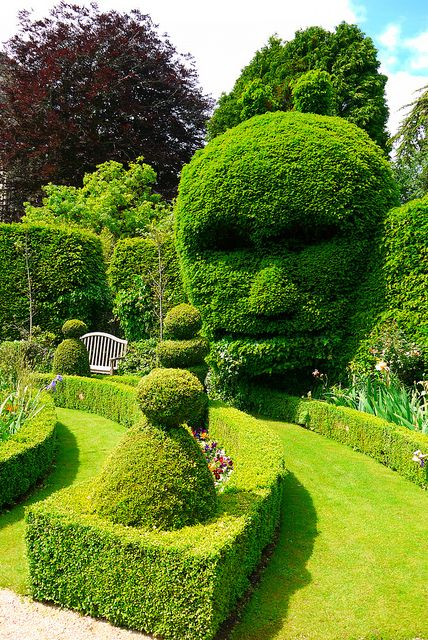 ☆ Strange spooky Hedge :¦: By Keith Allso ☆