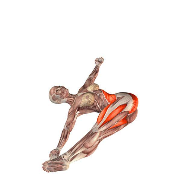 Spinal bend pose, legs to the left - Jathara Parivartanasana left - Yoga Poses | YOGA.com