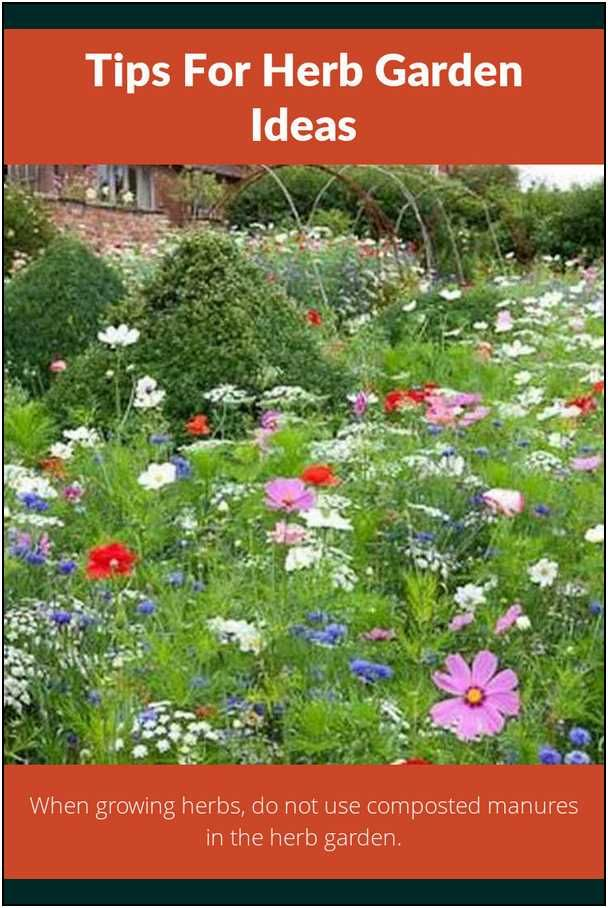Great Tips For Keeping Your Plants Healthy Herb Garden Ideas