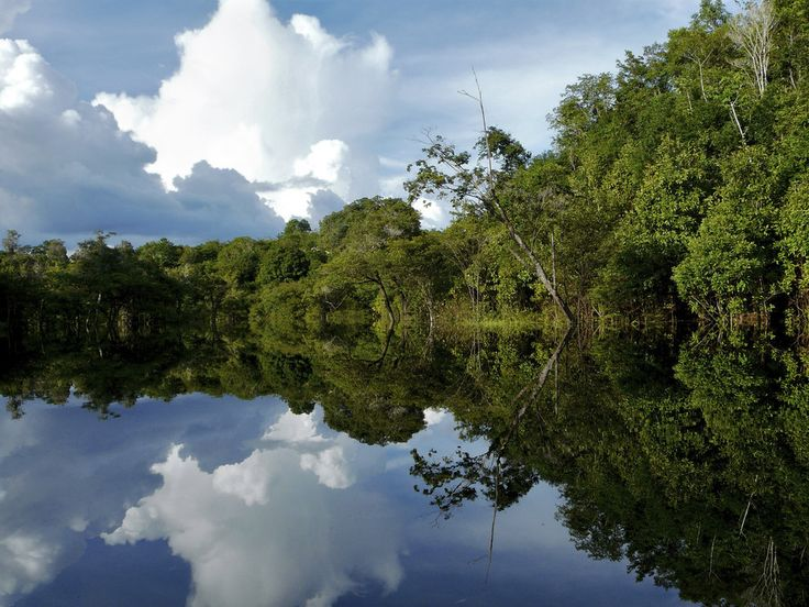 Amazon River: | 17 Stunning Places In Brazil You Need To See Before You Die