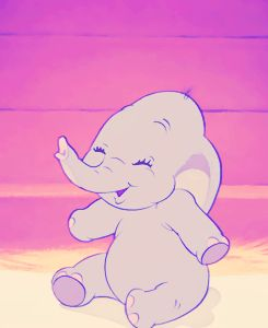 Baby dumbo is just the cutest!