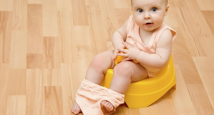 Get the lowdown on travel potties, seat inserts, toilet training apps and books, and other tools to help potty training go smoothly.