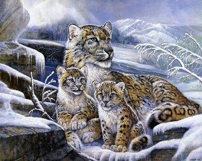 Snow Leopards Ruane Manning