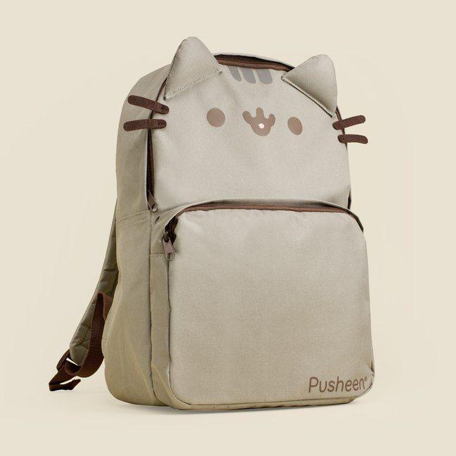 cream and white tabby cat