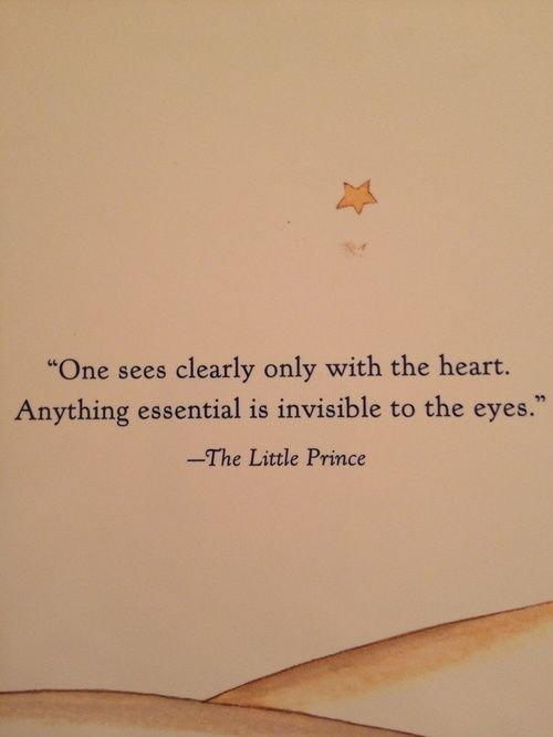 The Little Prince is absolutely brilliant. They did a wonderful jib bringing it to life in the movie as well