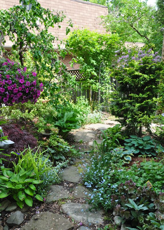 Three Dogs in a Garden: A Garden Over Twenty Years in the Making (Part 2)