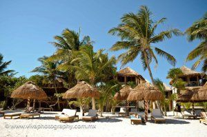 cancun-shuttle-to-hotel-rosa-del-viento-tulum - #Tulum #Travel #Transportation
