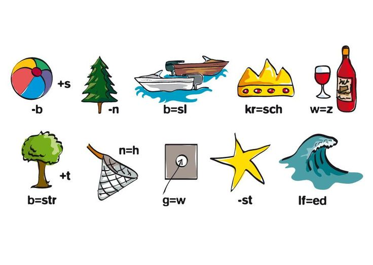 Boom - Illustratief ontwerp; voor grafisch ontwerp, (educatieve) illustraties en infographics