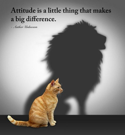 Short One Line Quotes on Attitude towards life, in the workplace, attitude and ego, success and personality. Best Good Quotes on Attitude is everything!