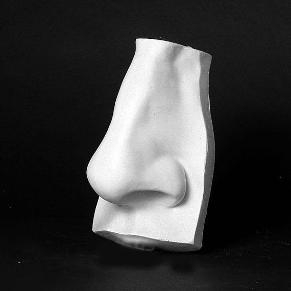 Hey, I found this really awesome Etsy listing at https://www.etsy.com/listing/158763882/plaster-nose-cast-wall-sculpture