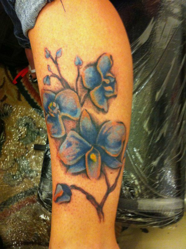 Amaryllis Tattoo Artistry And Design