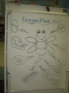Bugs/Insects/Butterfly Unit