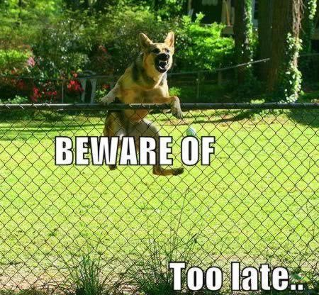 12 Hilarious Dog Signs - Oddee.com: Kai did this once & went after the neighbors dog needless to say they never talked to us again...