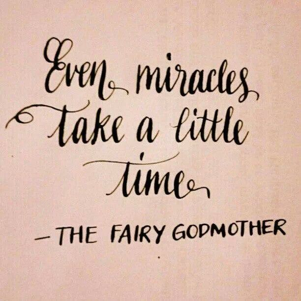 ~ The Fairy Godmother ~