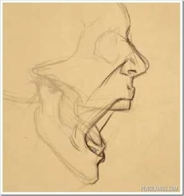 scream, yell, mouth wide open drawing ref – #drawi…