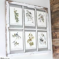 Window Picture Frame and Free Botanical Printables