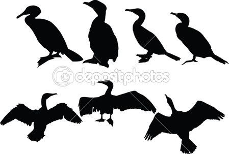 Cormorants collection — Stock Vector © vule46 #2152854