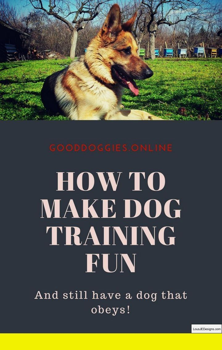 Pics of Dog Obedience Tips, DIY, Schedule and Other Ideas