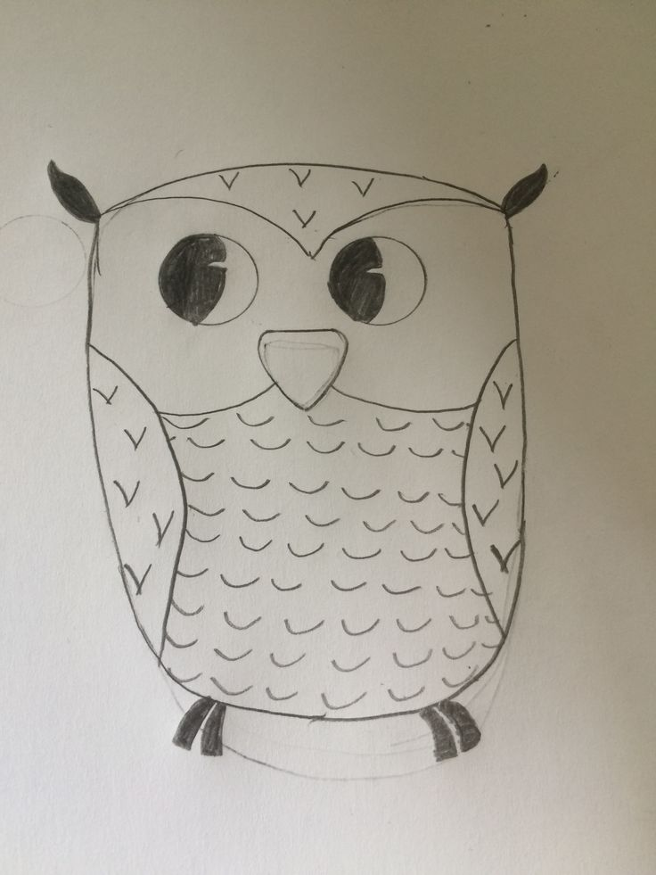 A cute owl i have drawed