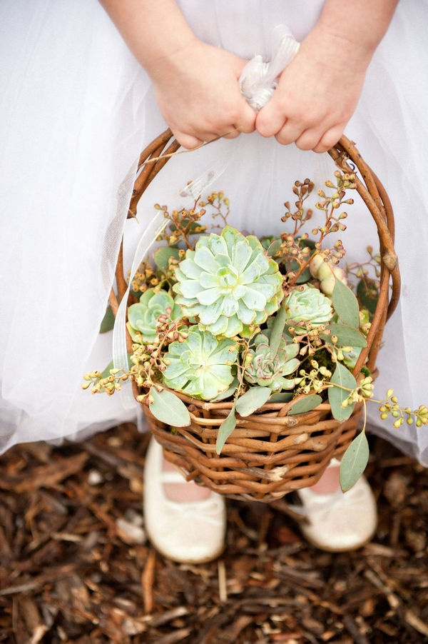 succulent flower girl basket