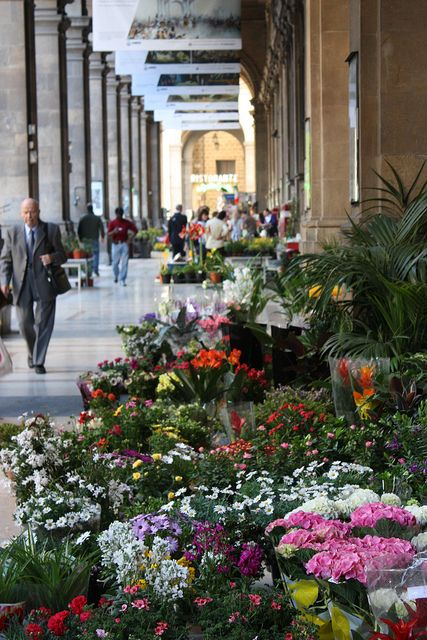 Thursday flower market, Florence. From La Vita e Bella - An Italy Expat Blog.