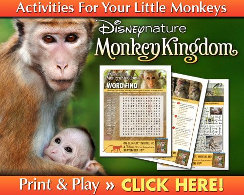 Printable Activity Sheets for Disneynature's MONKEY KINGDOM