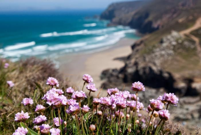 View from Chapel Porth cliffs, Cornwall, England