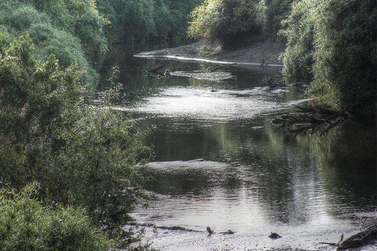 Rio Butalcaru, Dalcahue