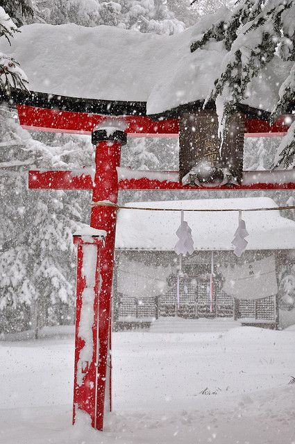 Torii under the snow in Nagano-ken, Japan